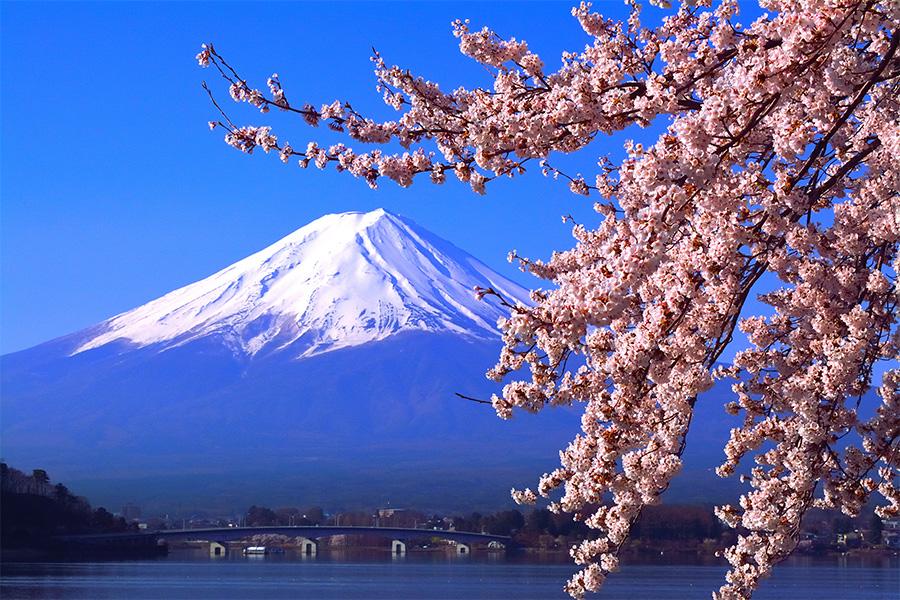 Lake Kawaguchiko Image