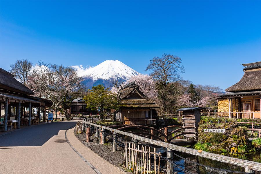 Oshino Hakkai Image